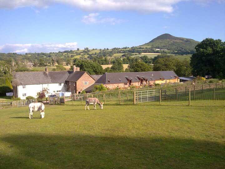 Pen-y-Dre Farm